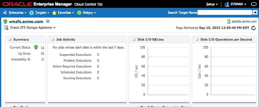 ZFS Storage monitoring with #EM12C |